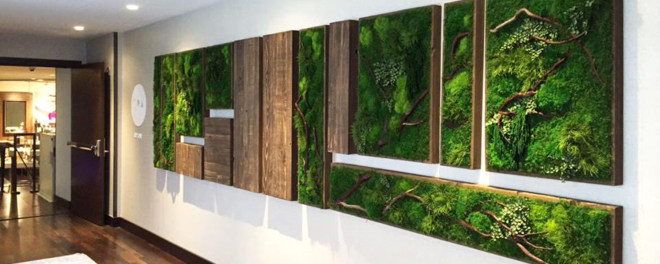 interior spa Artisan Moss plant art wall hanging