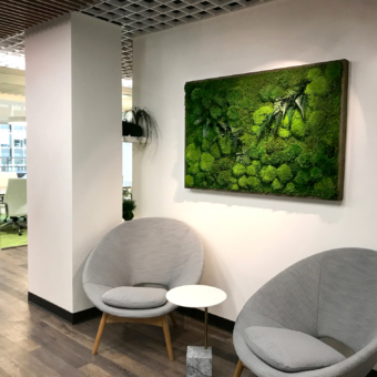 A serene Plant Moss Painting hangs in a Suntory office