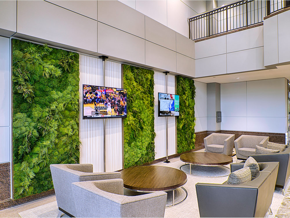 Architectural moss plant panel art for a lobby