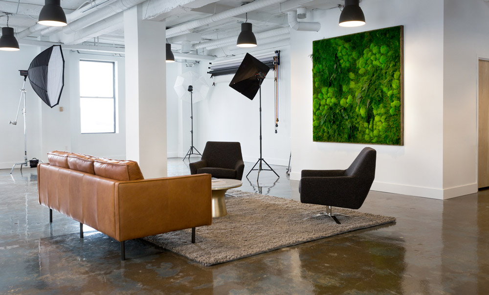 Artisan Moss plant wall for Green Sky Studio in Detroit.