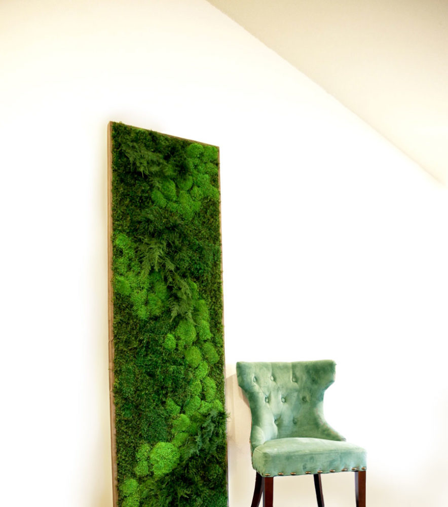 Artisan Moss plant paintings add natural warmth to any setting.