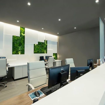 Artisan Moss green wall office hangings Rockland Urgent Care in New York.