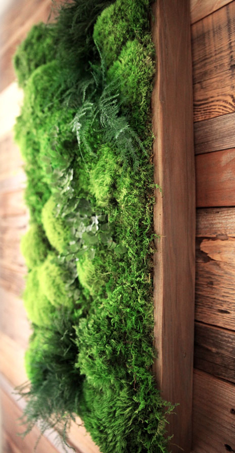 Artisan Moss natural wood frame with preserved moss and ferns.