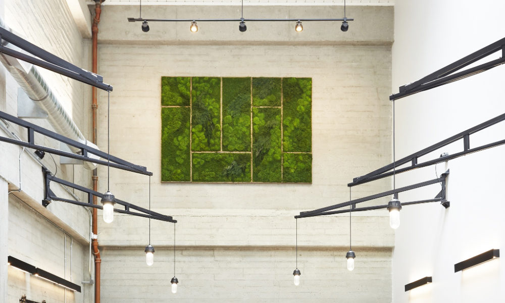 Green Wall Art By Moss