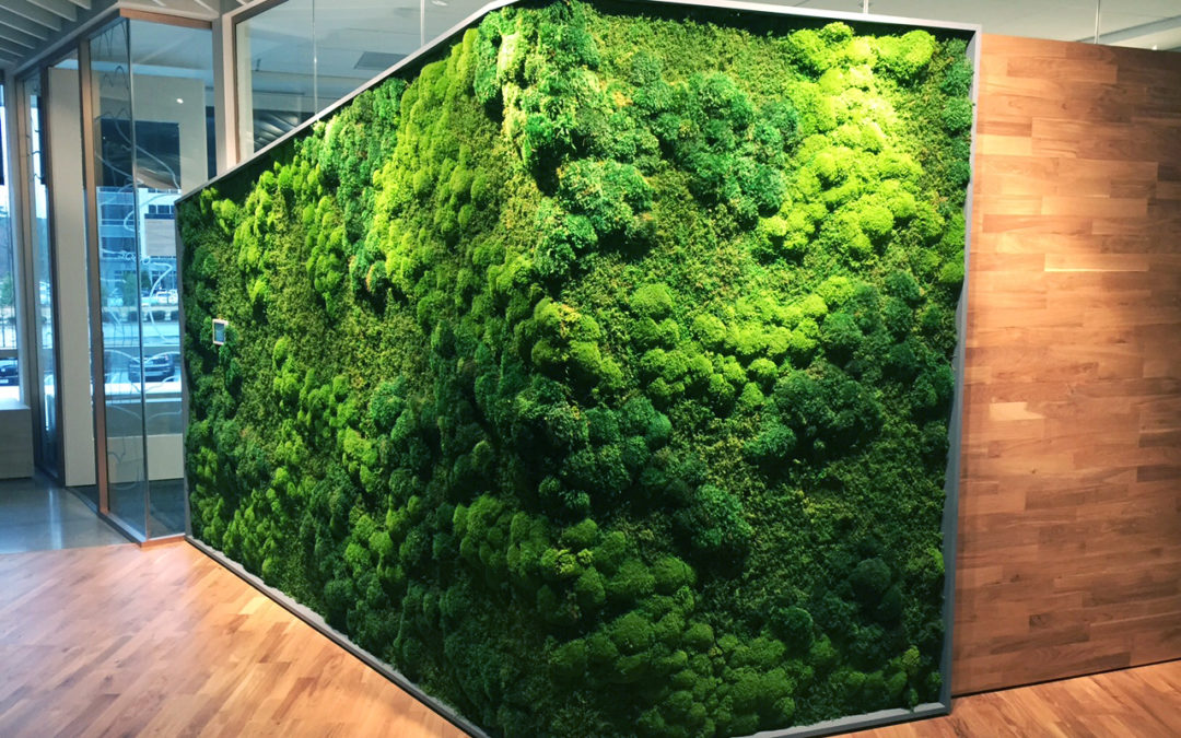 What Is Green Wall Art Artisan Moss