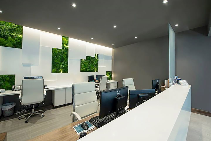 Custom Moss Walls Amp Installations For Commercial Spaces